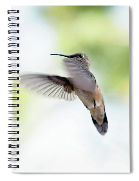 On The Wing 2 Spiral Notebook
