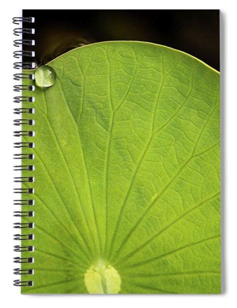 One Drop Spiral Notebook