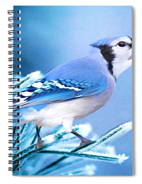 One Frosty Morning Spiral Notebook