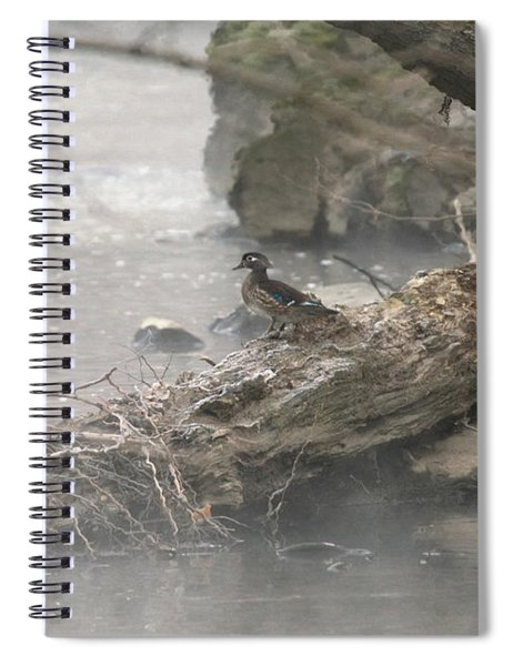 One Little Ducky Spiral Notebook