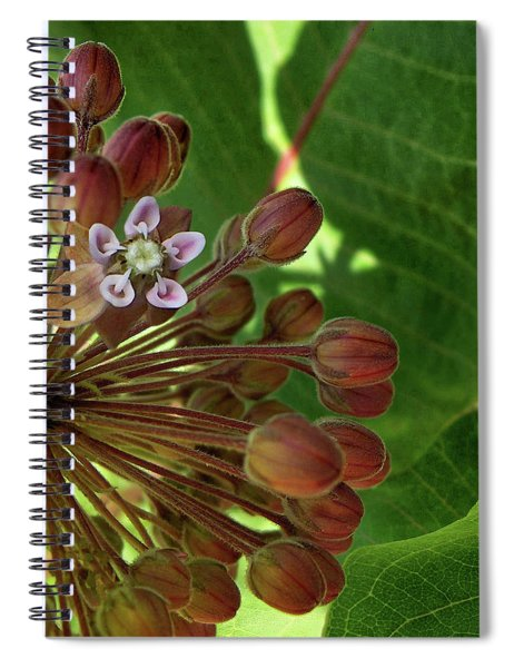 Only The Beginning Spiral Notebook