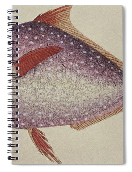 Opah Spiral Notebook
