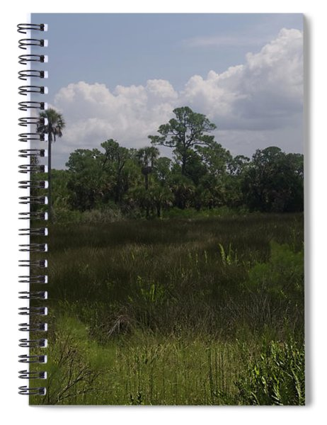 Open Meadow Of Trees Spiral Notebook