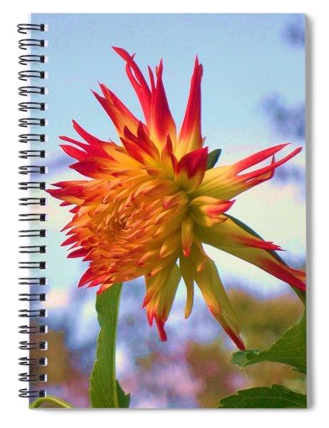 Orange And Yellow Dahlia Spiral Notebook