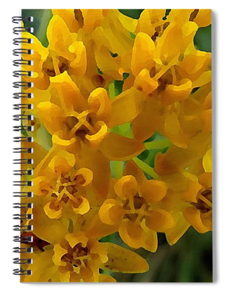 Orange Butterfly Weed Spiral Notebook by Shelli Fitzpatrick