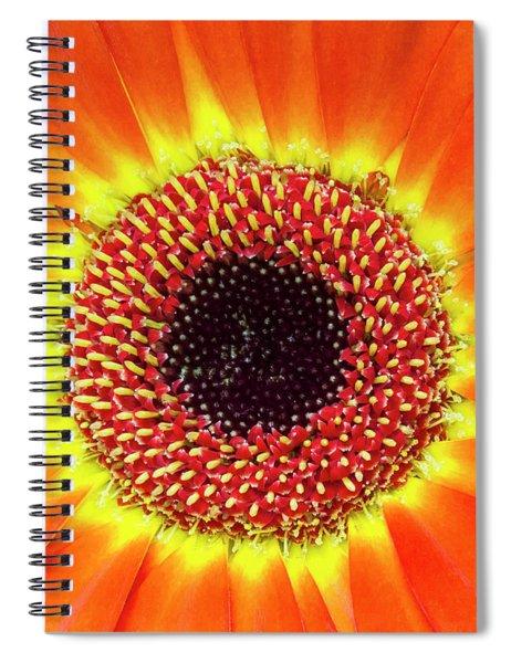 Orange Flower Macro Spiral Notebook