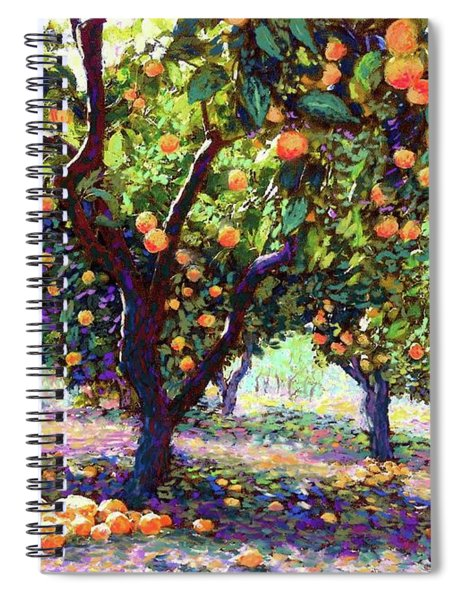 Orange Grove Of Citrus Fruit Trees Spiral Notebook