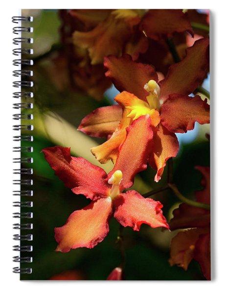 Orange Leap Spiral Notebook
