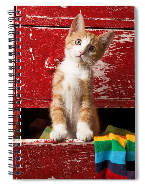 Orange Tabby Kitten In Red Drawer  Spiral Notebook
