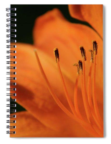 Orange Wave 3096 H_2 Spiral Notebook