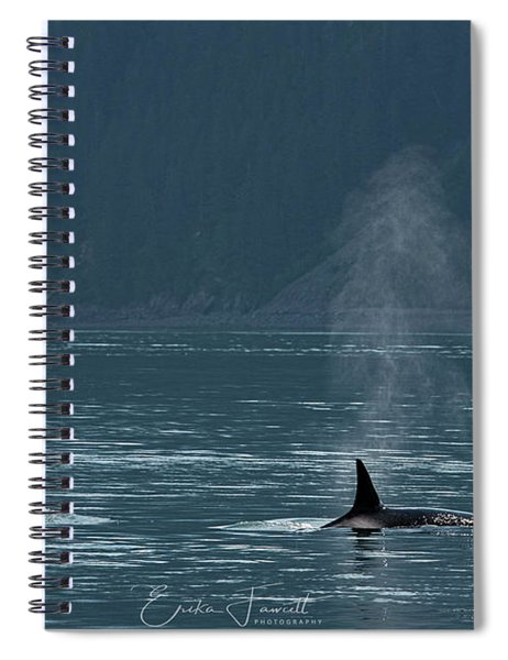 Orcas In Resurrection Bay Spiral Notebook