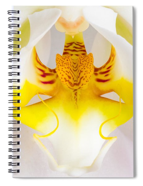 Orchid 1 Spiral Notebook