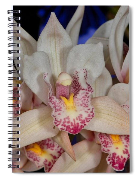 Orchid 348 Spiral Notebook