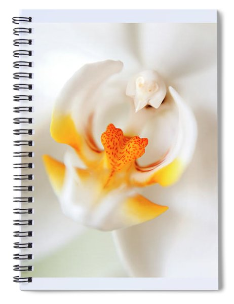 Orchid Detail Spiral Notebook