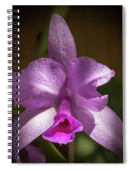 Orchid In The Shadows Spiral Notebook