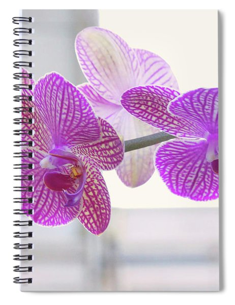 Orchid Spray Spiral Notebook