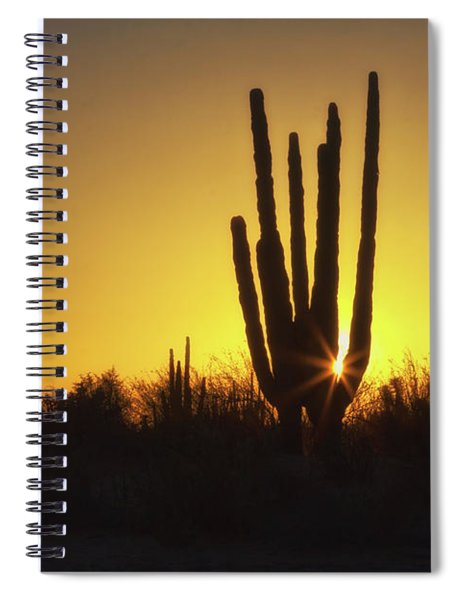 Organ Pipe Cactus Spiral Notebook