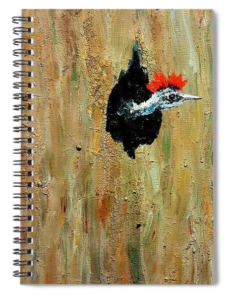 Original Bedhead Spiral Notebook