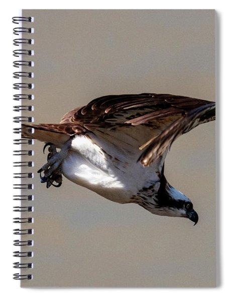 Osprey Dive Spiral Notebook