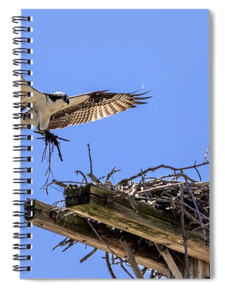 Osprey Nest Building Spiral Notebook