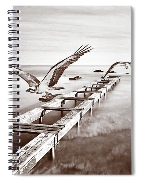 Osprey On The Move Bw Spiral Notebook