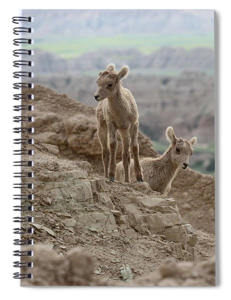 Out Exploring The Badlands Spiral Notebook