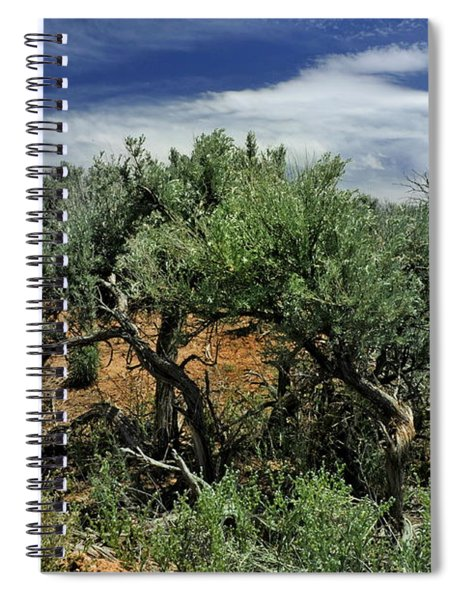 Out On The Mesa 3 Spiral Notebook