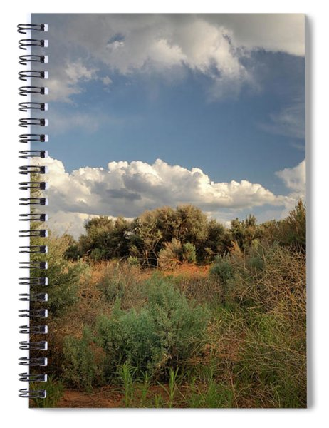 Out On The Mesa 4 Spiral Notebook