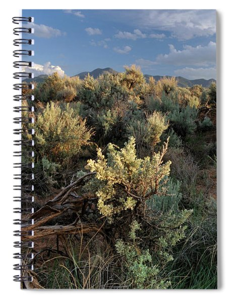 Out On The Mesa 7 Spiral Notebook