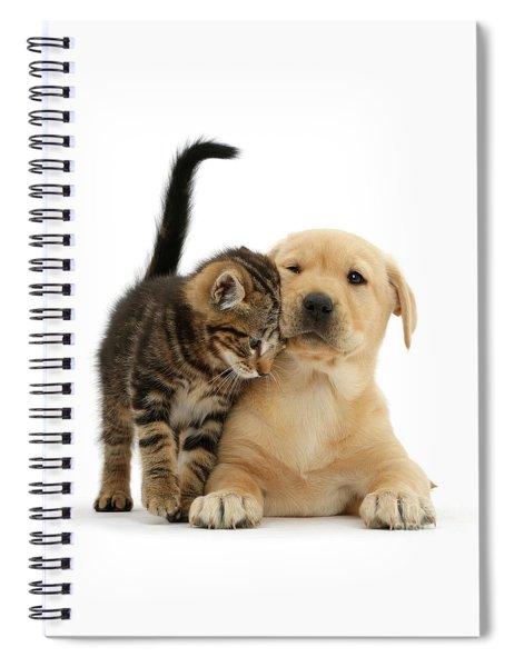 Over Friendly Kitten Spiral Notebook