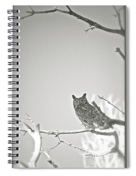 Owl Be Seeing You Spiral Notebook