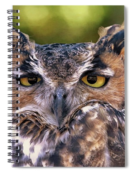 Owl Eyes Spiral Notebook