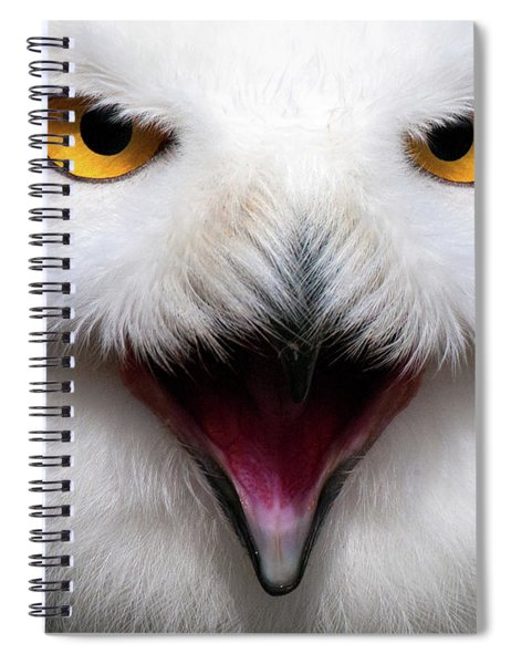 Owlsome Spiral Notebook