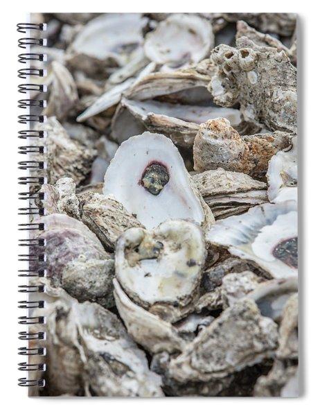 Oyster Shells  Spiral Notebook