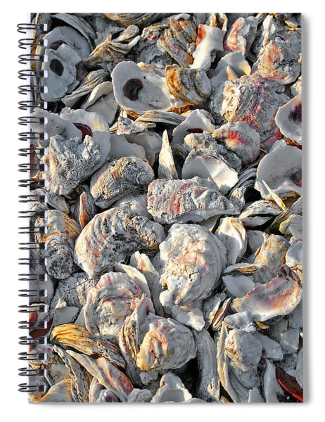 Oysters Shells Spiral Notebook