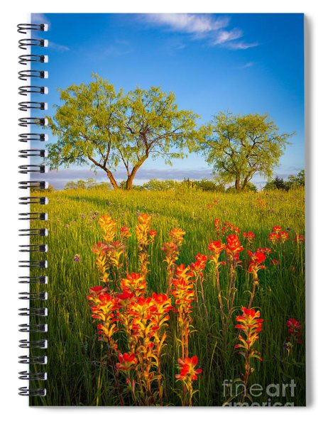 Paintbrush On Fire Spiral Notebook