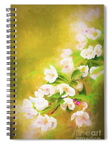 Painted Crabapple Blossoms In The Golden Evening Light Spiral Notebook