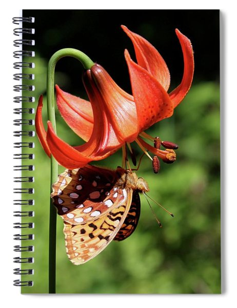 Painted Lady On Lily Spiral Notebook