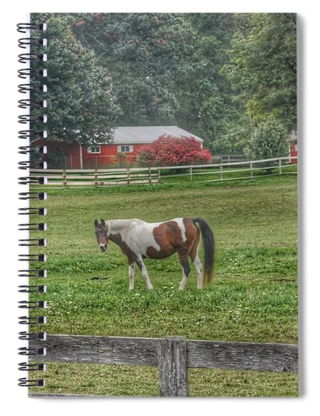 1005 - Painted Pony In Pasture Spiral Notebook