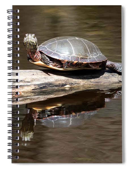 Painted Reflection Spiral Notebook