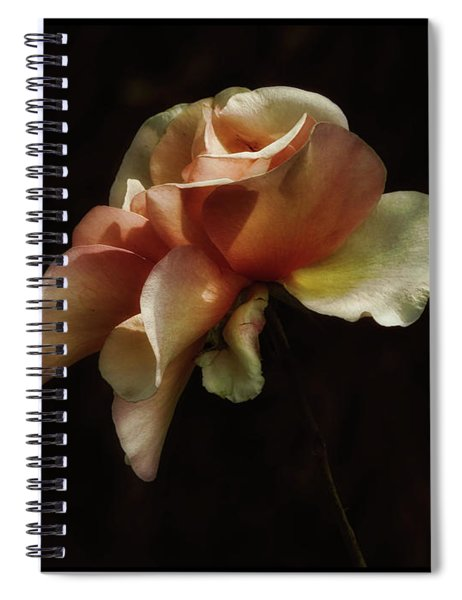 Painted Roses Spiral Notebook