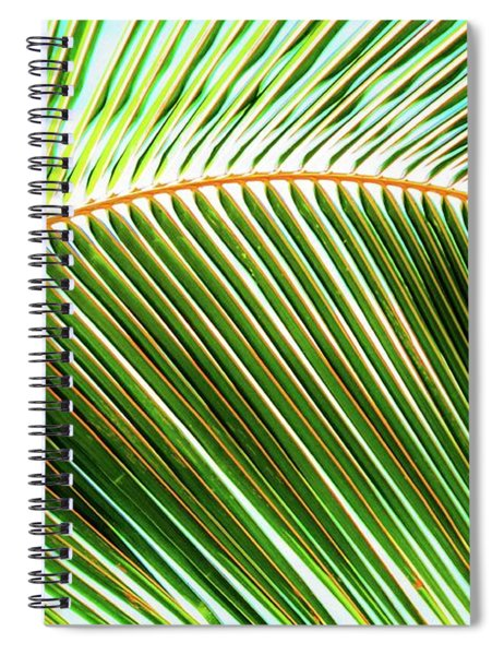 Palm Frond Sway Spiral Notebook