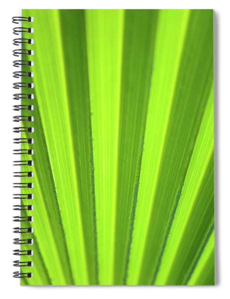 Palm Leaf Abstract Spiral Notebook