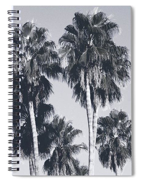 Palm Springs Palm Trees- Art By Linda Woods Spiral Notebook