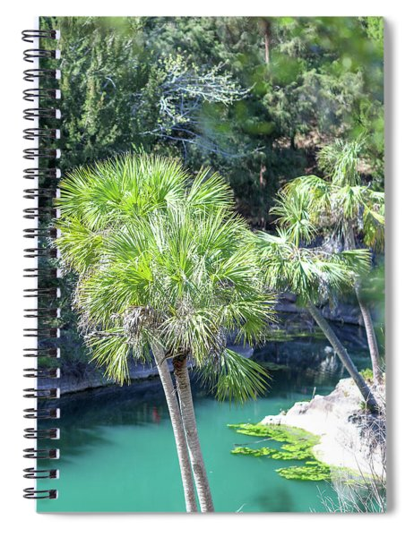 Palm Tree Blue Pond Spiral Notebook