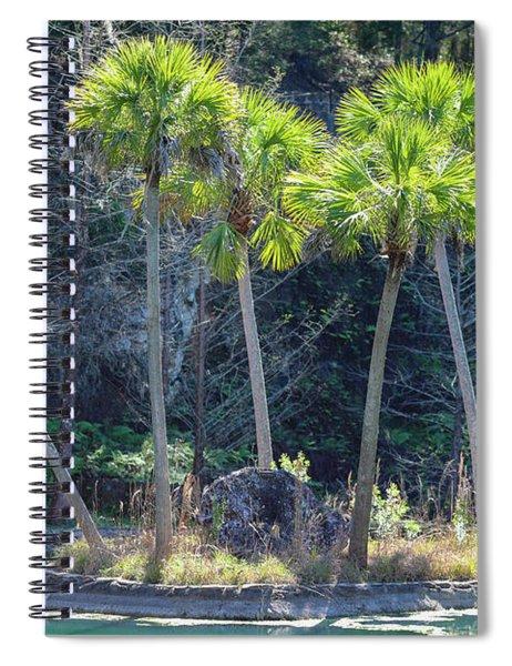Palm Tree Island Spiral Notebook
