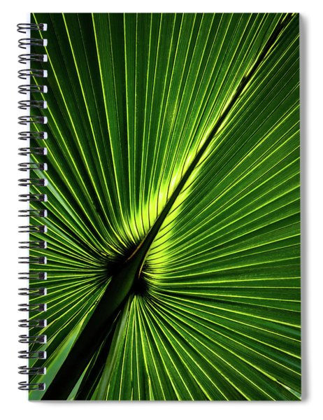 Palm Tree With Back-light Spiral Notebook