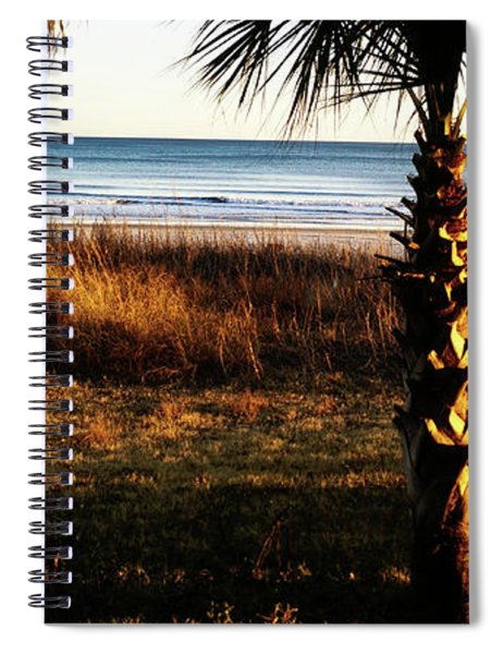 Palm Triangle Spiral Notebook
