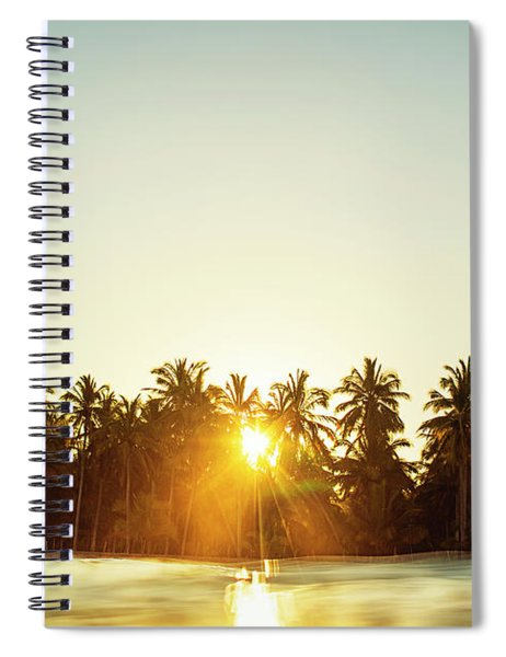 Palms And Rays Spiral Notebook