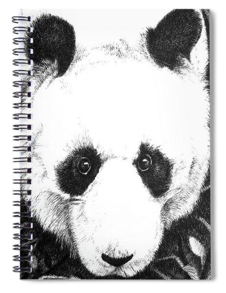Panda Portrait Spiral Notebook